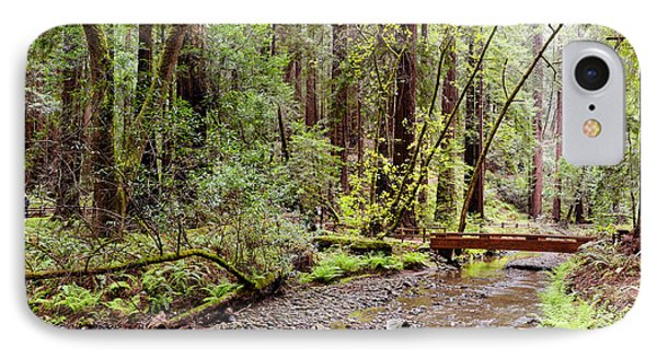 Redwood Creek Flowing Through Muir Woods National Monument - Mill Valley Marin County California IPhone Case