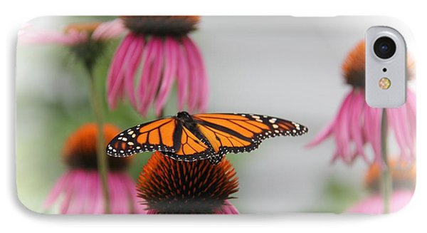Resting Monarch IPhone Case