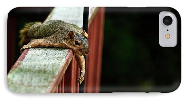 Resting Squirrel IPhone Case