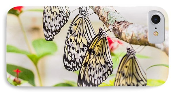 Rice Paper Butterflies IPhone Case