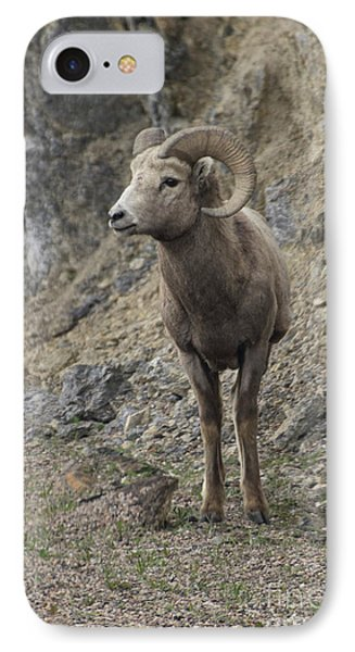Rockies Big Horn IPhone Case