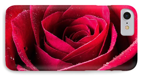 Rose After The Rain IPhone Case