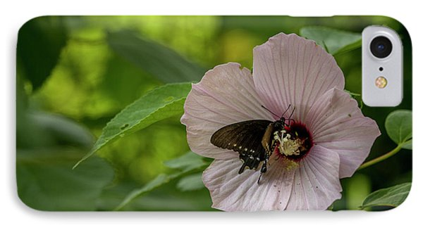 Rose Mallow IPhone Case
