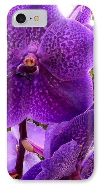 Royal Purple Orchids IPhone Case