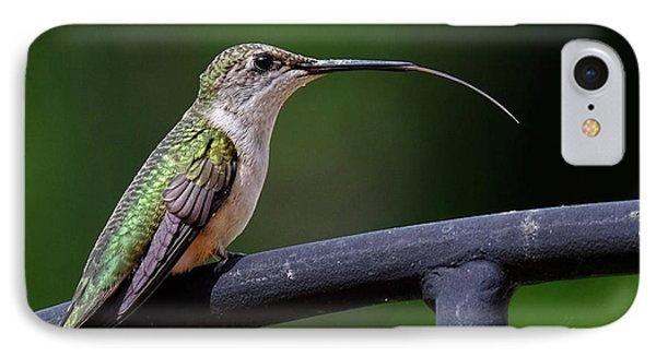 Ruby-throated Hummingbird Tongue IPhone Case