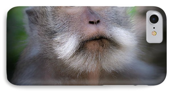 Helicopter iPhone 8 Case - Sacred Monkey Forest Sanctuary by Larry Marshall