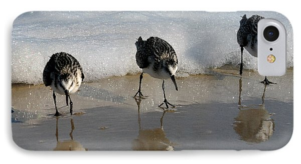 Sandpipers Feeding IPhone Case