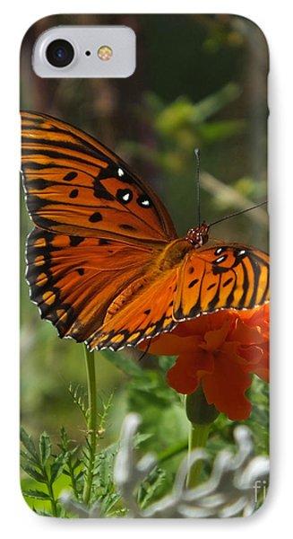 September Gulf Fritillary On Marigold IPhone Case