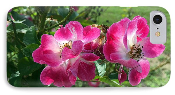 September Rose IPhone Case