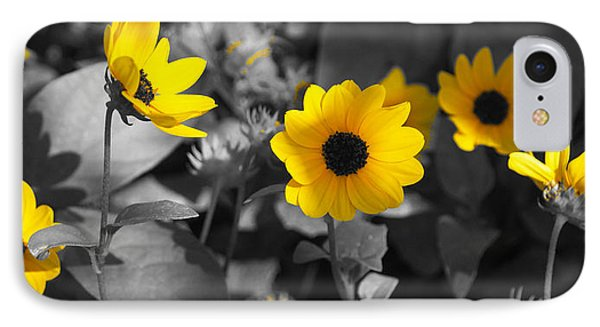 Shaded Daisies IPhone Case