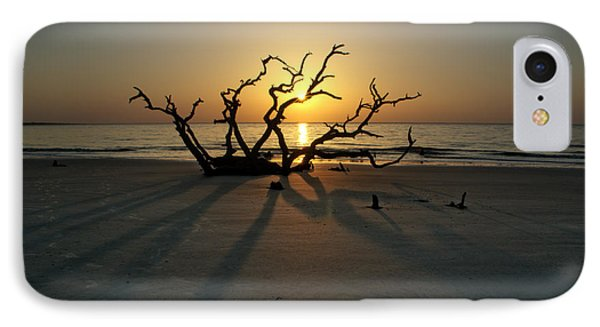 Shadows Of Driftwood IPhone Case
