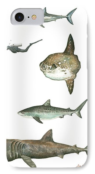 Sharks And Mola Mola IPhone Case