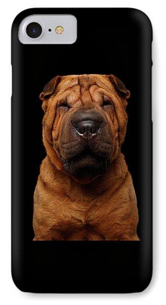 Sharpei Dog Isolated On Black Background IPhone Case