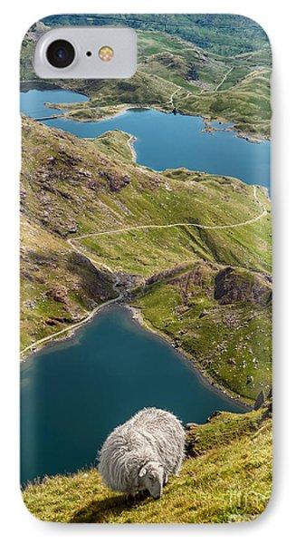 Sheep Of Snowdonia IPhone Case