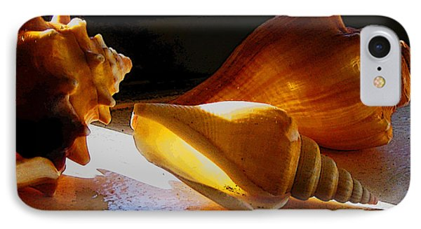 Shells On The Windowsill IPhone Case