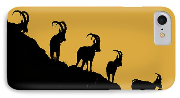 Silhouette Sunrise IPhone Case