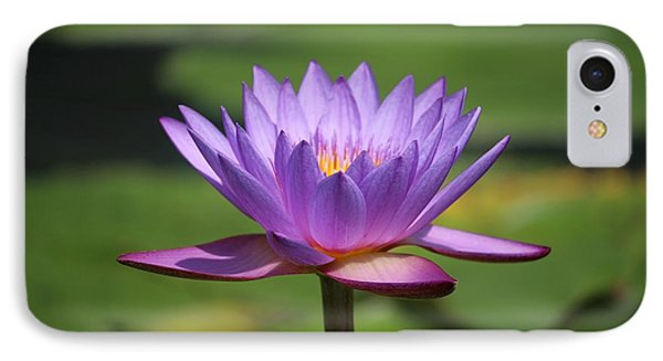 Singapore Flower IPhone Case