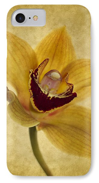Orchid iPhone 8 Case - Singular Sensation by Rebecca Cozart