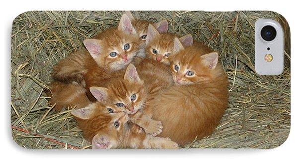Six Kittens IPhone Case