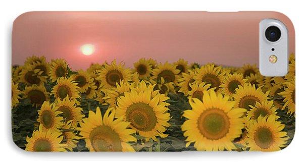 Skn 2179 Sunflower Landscape IPhone Case