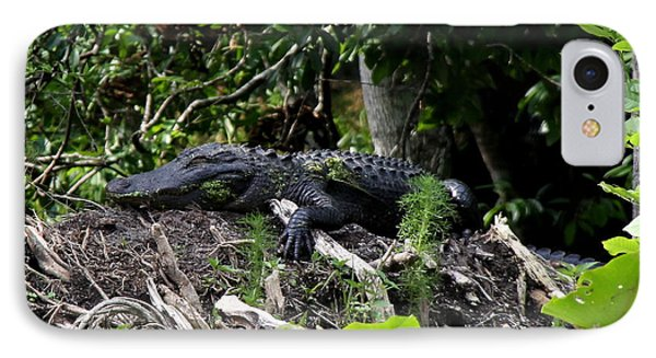 Sleeping Alligator IPhone Case
