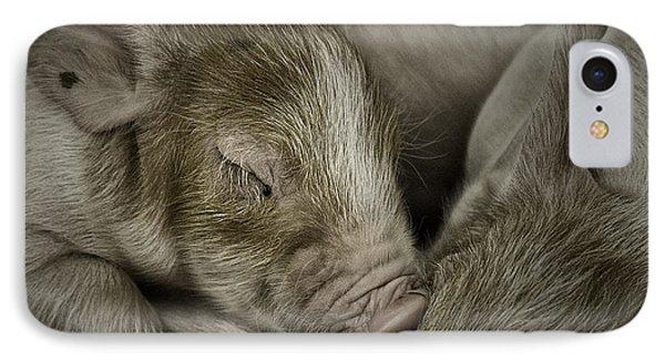 Sleeping Piglet IPhone Case