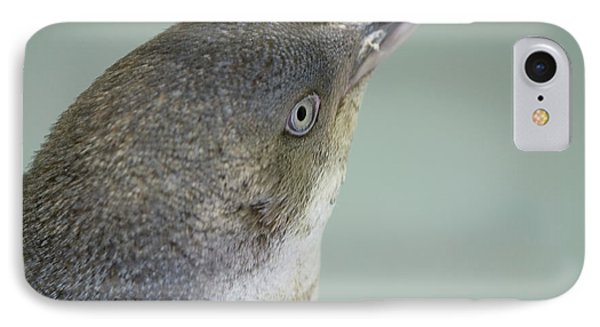 Small Blue Penguin  IPhone Case