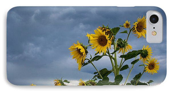 Small Sunflowers IPhone Case