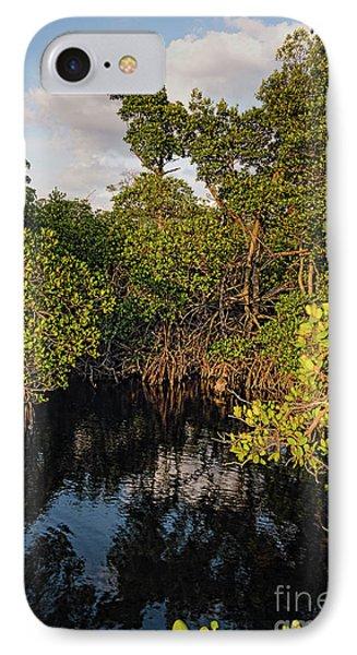 Small Waterway In Vitolo Preserve, Hutchinson Isl  -29151 IPhone Case