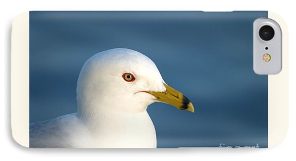 Smiling Seagull IPhone Case