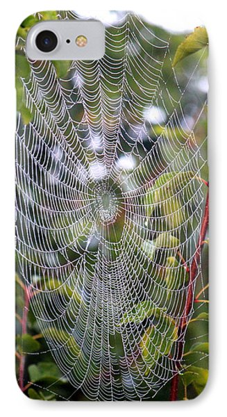 Spider Web IPhone Case
