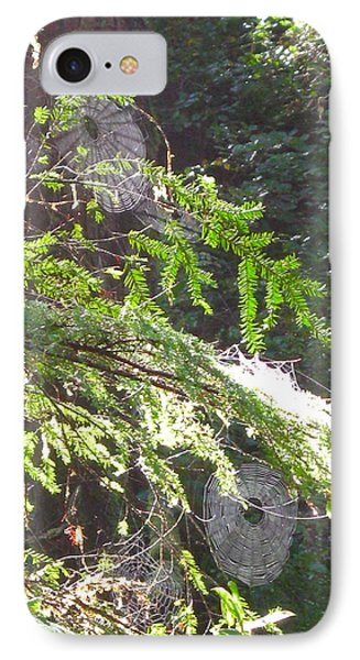 Spider Webs  -- Olympic National Park IPhone Case