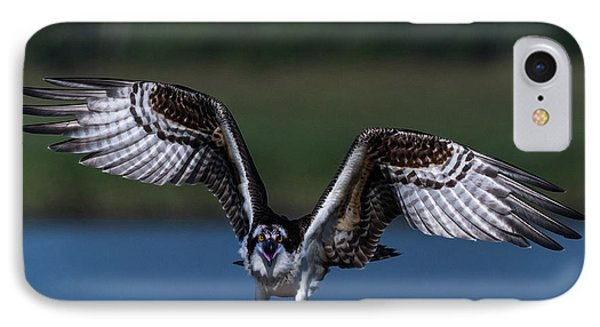 Spread Your Wings IPhone Case