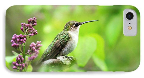 Spring Beauty Ruby Throat Hummingbird IPhone Case