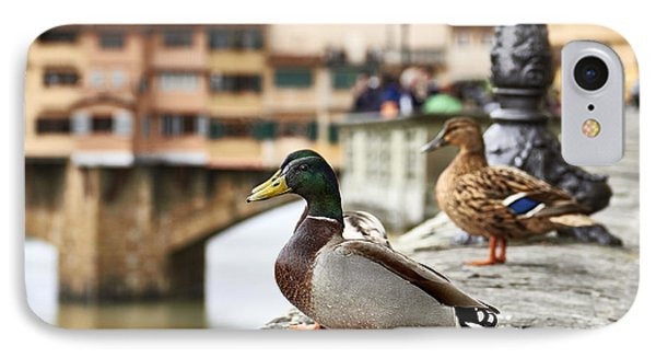 Spring Love Ducks IPhone Case