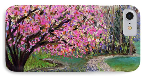 Spring Tree At New Pond Farm IPhone Case