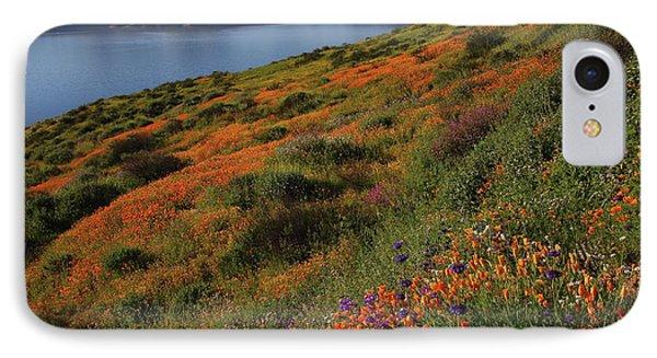 Spring Wildflower Season At Diamond Lake In California IPhone Case