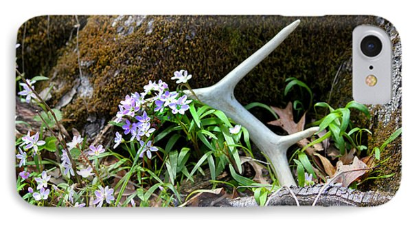 Springtime Shed Anter IPhone Case