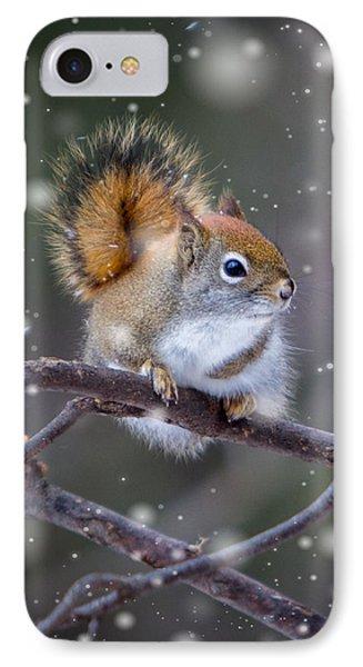 Squirrel Balancing Act IPhone Case