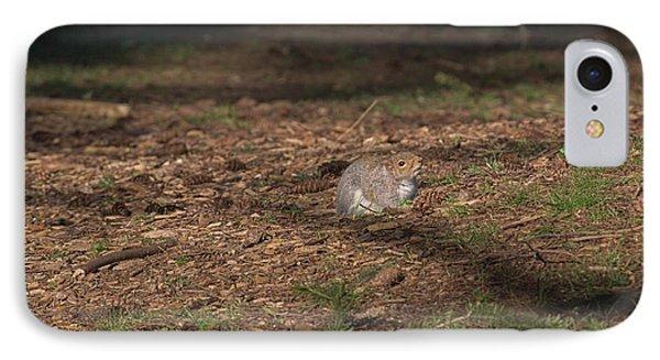 Squirrrrrrel? IPhone Case