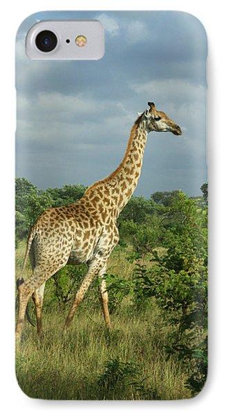 Standing Alone - Giraffe IPhone Case