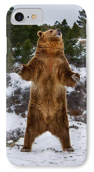 Standing Grizzly Bear IPhone Case