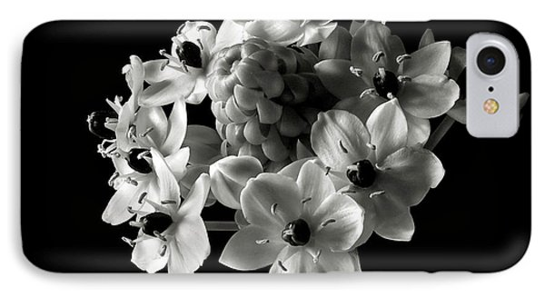 Star Of Bethlehem In Black And White IPhone Case
