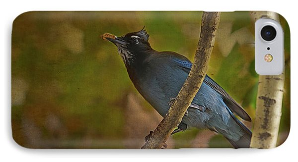 Stellars Jay IPhone Case