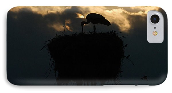 Stork With Evening Sun Light  IPhone Case