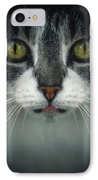 Stray Cat 2 IPhone Case