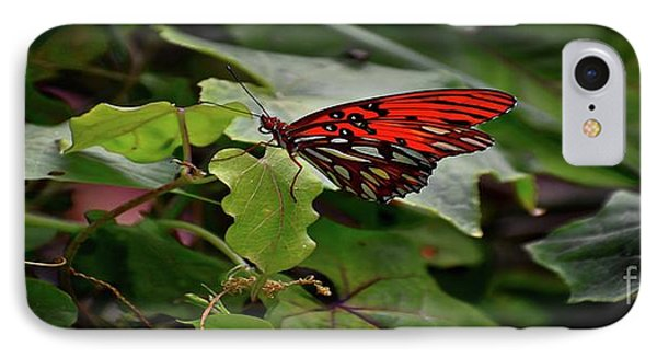 Stretched Butterfly IPhone Case