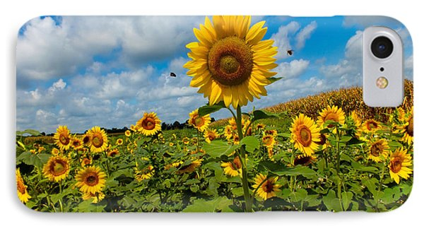 Summer At The Farm IPhone Case