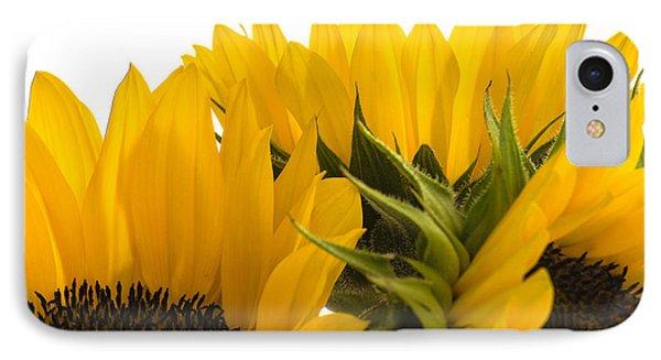 Sunflower Bright IPhone Case