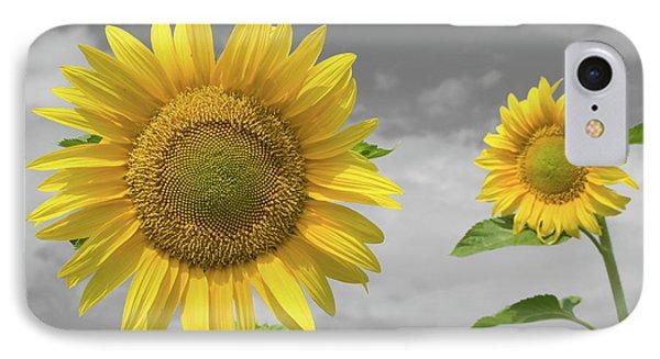 Sunflowers V IPhone Case